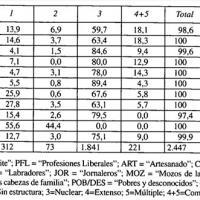 Estructura_hogares_por_profesiones.jpg