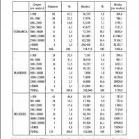 Aportaciones al matrimonio en la Sierra de Alcaraz según los testamentos.jpg